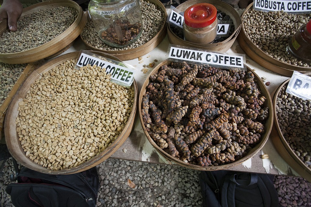 Bali Spice garden with Coffee Luwak - Mari Bali Tours