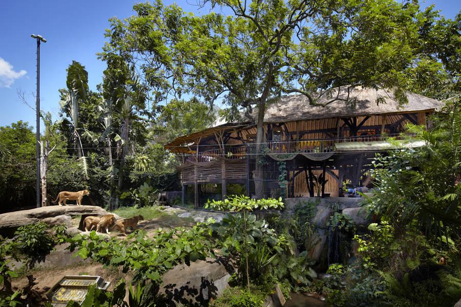 Bali Zoo, in Gianyar regency - Bali - Mari Bali Tours