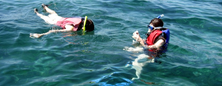 Snorkeling at the beach - Mari Bali Tours