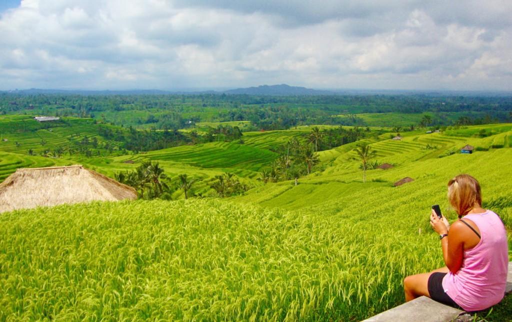 Jatiluwih Rice Terrace - The Largest and most beautiful rice terrace in Bali, in Jatiluwih village, Tabanan regency - Mari Bali Tours