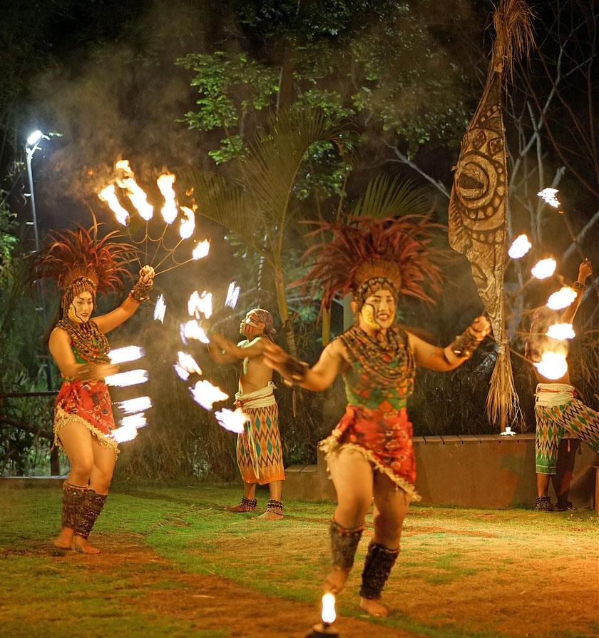 Bali Night Safari in Bali Safari & marine park, in Gianyar, Bali - Indonesia - Mari Bali Tours