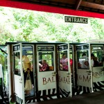 Bali Safari and Marine park in Gianyar, Bali - Mari Bali Tours (114)