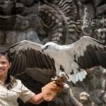 Bali Safari and Marine park in Gianyar, Bali - Mari Bali Tours (165)