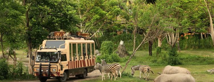 Bali Safari and Marine park in Gianyar, Bali - Mari Bali Tours (4)