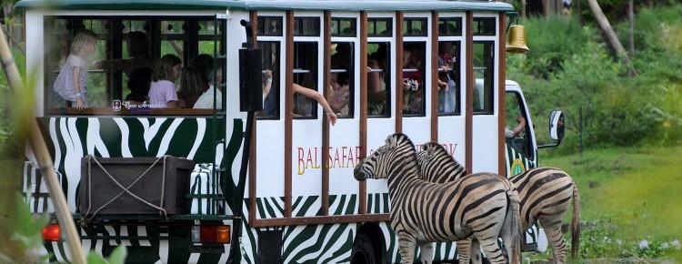 Bali Safari and Marine park in Gianyar, Bali - Mari Bali Tours (95)