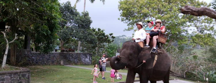 Ms. Julie and Family at Elephant ride camp- Mari Bali Tours (40)