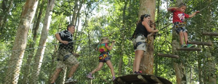 Bali Treetop activity at bedugul botanical garden - Mari Bali Tours (12)